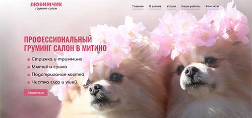 Сайт Груминг в Митино - разработан и создан Hostvp